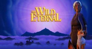the wild eternal game
