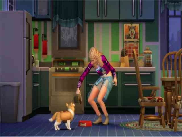 Cats And Dogs Sims  Foxes