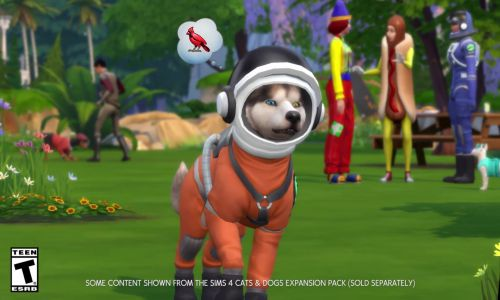 Download The Sims 4 My First Pet Stuff Setup