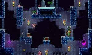 towerfall game for pc